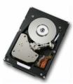 Жесткий диск Hitachi 42D0637