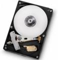 Жесткий диск Hitachi HDS721010DLE630