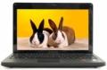 Ноутбук Lenovo S205 (59-310726)