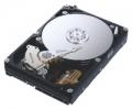 Винчестер SAMSUNG HD321KJ