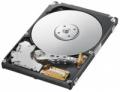 Жесткий диск Samsung HM320HJ