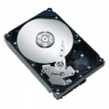 Винчестер SEAGATE ST3640323AS