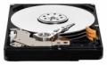 Жесткий диск Western Digital WD10TPVT